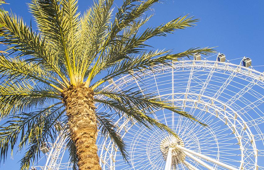 Best summer family travel location is Orlando, Florida